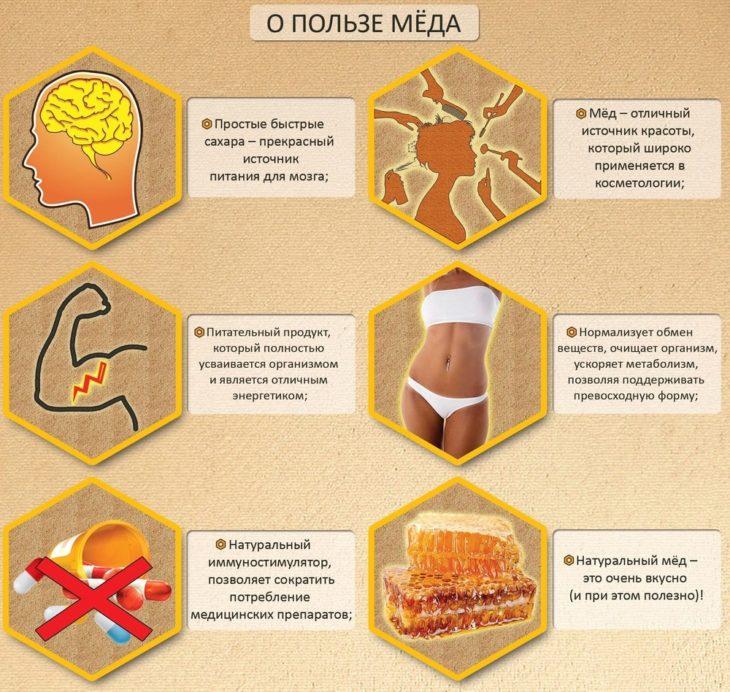 медовые свойства