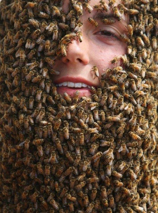 лицо в пчелах