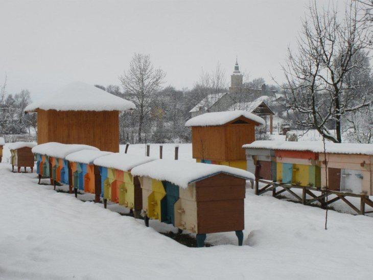 зима на пасеке