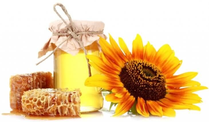 соты с медом и подсолнухом