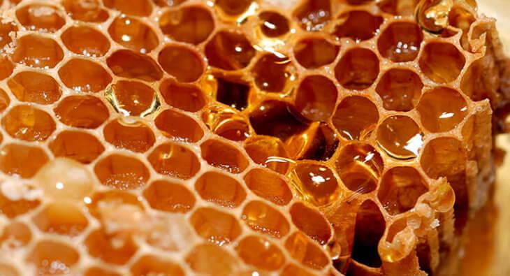 сотовый мед в восковых ячейках