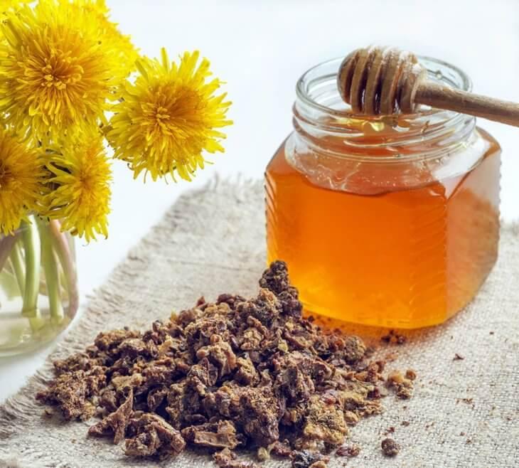 кусочки прополиса с медом